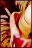 7 - 11 avril 2010 Maisons-Alfort Portes ouvertes à l'Ecole Vétérinaire d'Alfort Jardin botanique Tulipe panachée (melina1965) Tags: flowers flower macro fleur fleurs spring nikon îledefrance tulips tulip april avril printemps 2010 tulipe smörgåsbord tulipes maisonsalfort d80 photoscape écolevétérinairedalfort valdefrance nopoolsweeperneeded notwithoutmycamera nosinmicámara