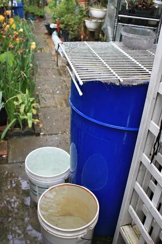 Overflown Rain Barrel