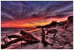 portsea beach_4