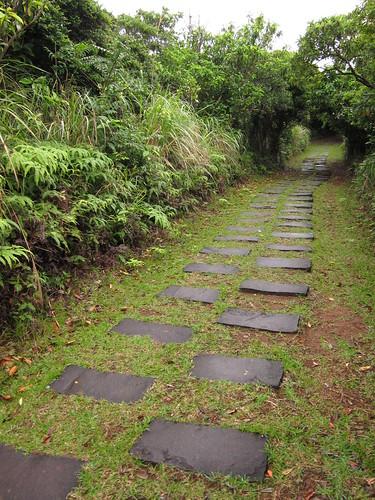 Ancient Mountain Trail