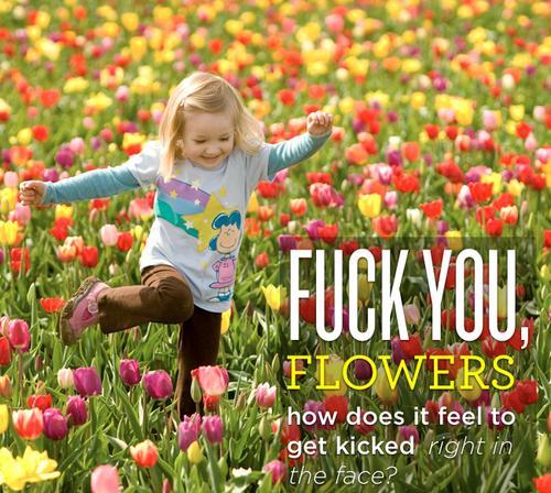flowerkick