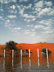(Abdulrahman AlShetwi) Tags: trees tree water car clouds dry saudi arabia dust 3gs  iphone disert                                    iphone3gs  alshetwi