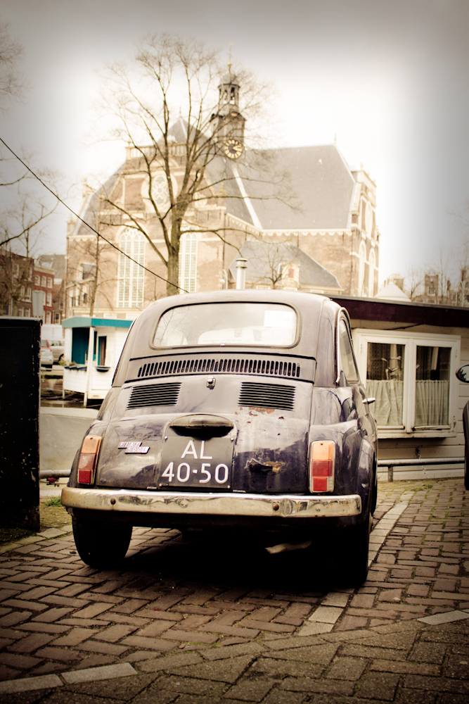 Dutch Beetle