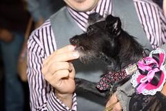 BaconCamp 2010