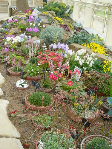 Alpine House Harlow Carr