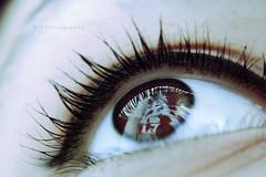 fai clic qui per aggiungere un titolo ([L] di .zuma) Tags: love rose mark mio compleanno amore occhio rosse pupilla ciglia fidanzato