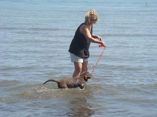 Jasper Goes Swimming