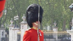 Grenadier Guards (SouthEastern Star ) Tags: uk england london grenadierguards stateopeningofparliament bestvideosflickr panasonicfz28