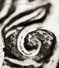6 - in Abstract  (Macro Mondays) (PrayerSpaces) Tags: blackandwhite bw 6 abstract number explore frame mm six 50mmlens explored macromondays ononesoftware prayerspaces