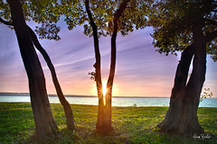 \\V// ([Adam Baker]) Tags: park trees sunset summer orange lake ny water grass leaves silhouette yellow clouds canon landscape warm purple state vivid upstate aurora cayuga 1740l longpoint gnd adambaker 5dmarkii
