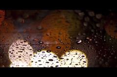 And Then It Rained (michaeljosh) Tags: rainyseason nikkor50mmf14d project365 nikond90 andthenitrained michaeljosh