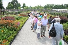 IMG_4529 (FreckledPast) Tags: ireland dublin irish bloom phoenixpark gardenshow republicofireland evinokeeffe bloom2010