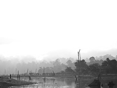 Road to Mordor (subaudible) Tags: lake digital olympus malaysia e3 50200mm zuiko terengganu tasik kenyir tasikkenyir lakekenyir
