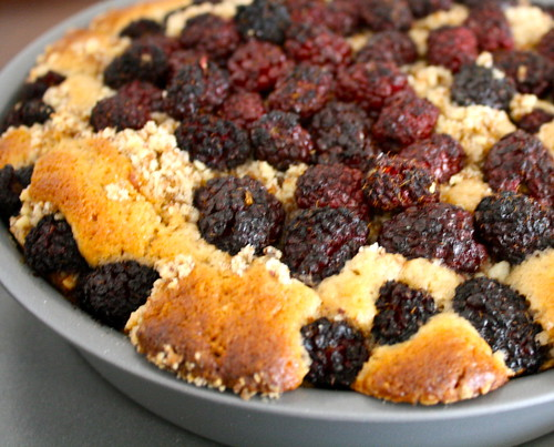sandi's blackberry crumb cake
