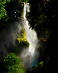 Sunlit and Windblown (Darrell Wyatt) Tags: light green creek waterfall moss exposure gorge columbiagorge windblown columbiarivergorge starvationcreek abigfave anawesomeshot theunforgettablepictures
