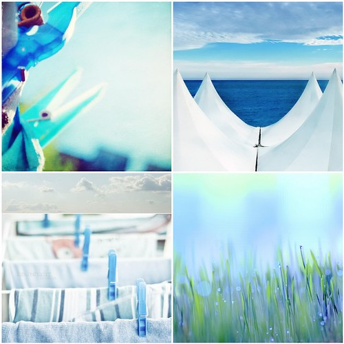 collecting whites & blues by monica.osacar.