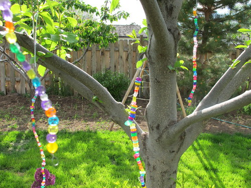 Rainbows dripping from our backyard tree