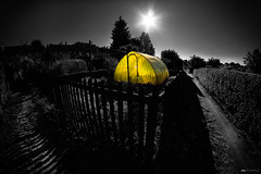 (mdoors) Tags: fisheye gelb zaun 8mm sonne potsdam garten accent gewchshaus eos500d