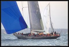 Round the Island Race 2010 (leightonian) Tags: uk island boat sailing unitedkingdom yacht isleofwight solent gb isle cowes wight 2010 iow roundtheislandrace rtir bluesail