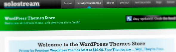 Premium WordPress Themes | Solostream