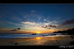 walking on beach (Eric 5D Mark III) Tags: ocean california sunset sky cloud dog seascape color reflection beach water silhouette canon walking landscape wave atmosphere wideangle gradient orangecounty tone ef1635mmf28liiusm lagunabeac eos5dmarkii