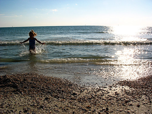 honeymoon island 2010