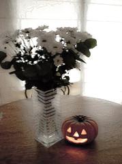 NOCHE DE HALLOWEEN 2010 (ABUELA PINOCHO ) Tags: flores halloween vela calabaza margaritas mesa 2010 tradicion jarron encendida citrit trucootrato trolledproud