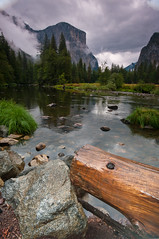 Rock and Wood, Merced River