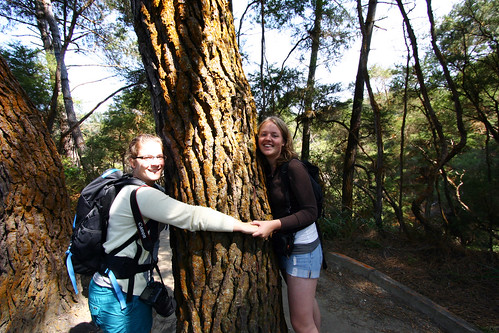 Treehugging with Anne and Carolien