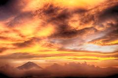 Fuji on the golden glow (shinichiro*@OSAKA) Tags: 駿東郡 静岡県 日本 jp 20170703ds46048edithdr 2017 crazyshin nikond4s afsnikkor2470mmf28ged fuji flower july summer ajisai hydrangea oyama shizuoka nik hdr 34943779463 candidate