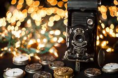 Pentacon 50mm f1.8 bokeh test (lawsonpix) Tags: select pentacon50mm pentacon f18 50mm bokeh christmaslights kodak no1pocketkodak bubblebokeh pocket bellows beyondbokeh