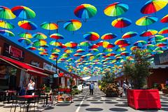 Umbrellas 2 (Oktay A) Tags: shopping nxmini 17mm tuzla viamarin istanbul market bazaar friday seller perspective outdoor tent tente samsungcamera turkei turkey türkiye street streetphotography sokak umbrella