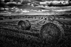 Plaine de Caen... (Maurice HUCHON) Tags: monochrome nb noir blanc black white paille ble caen plaine calvados normandie normandy france cloud nuage ciel sky campagne hdr pentax