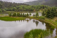 Potatso National Park. Shangri-La County. Yunnan, China (LKungJr) Tags: landscape china potatsonationalpark shangrila yunnan nature