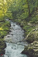 Kamačnik (kadriraj.me) Tags: vrbovsko primorskogoranska croatia hrv wwwkadrirajme nature priroda landscape pejzaž water voda forest šuma kamačnik nikon d3s nikkor 247028 kadrirajme fotoklubklik 2017 robertospudić