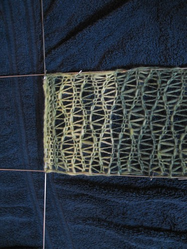 Inara scarf: blocking