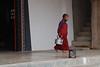 Young Monk at Work (Maulindu Chatterjee) Tags: india rinchenpong westsikkim kaluk easternhimalayas