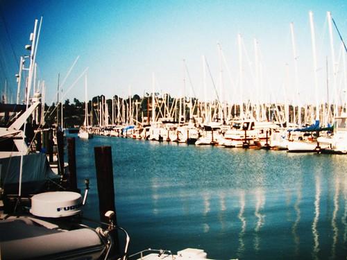 IMG_7626 Yachts, Sausalito