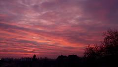 il y a des matins comme a...... (l'Ange de Loulou) Tags: soleil ciel nuages matin talence aquitaine gironde panasonicdmcfz18