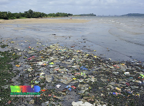 Marine debris on Pasir Ris