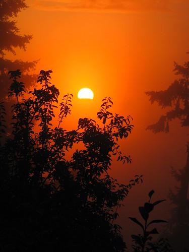 Western WA Sunrise