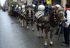 sant antoni tres tombs vilanova 2010 a tough day