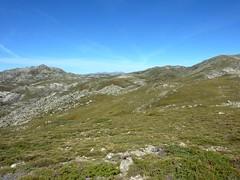 Sommet de la butte 1586 m : plateau du Cuscione