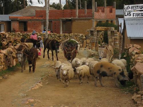 Yumani, Isla del Sol, Bolivia