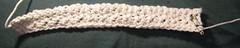 Crochet washcloth (WIP) (magnuscanis) Tags: crochet 51 a480 20100209