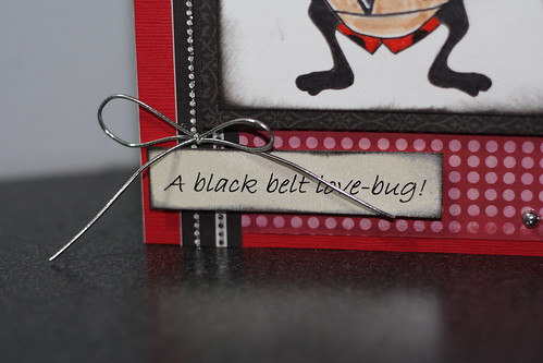 A black belt LoveBug0007