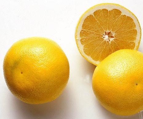 cut_lemons_stockfood