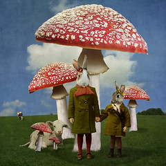 mid winter dream of spring in wonderland (Martine Roch) Tags: red pets rabbit texture nature mushroom animals square cow surreal lamb imagination surrealist aliceinwonderland manray petitechose martineroch