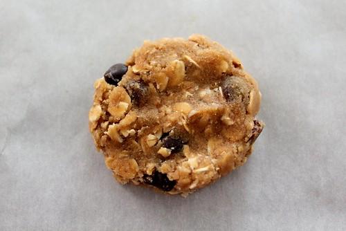 cookieoatmealraisinchocolatechip (5)