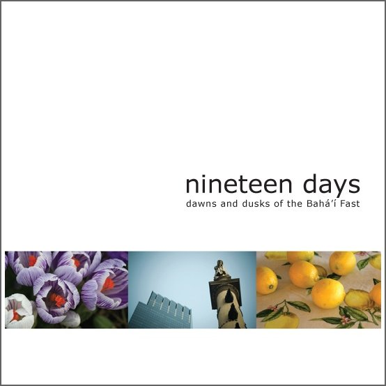 nineteen days - the book!